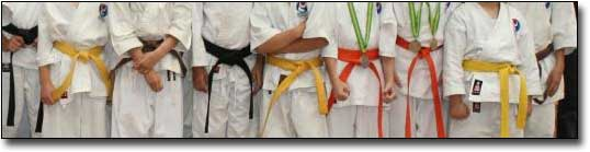 karate belts 4